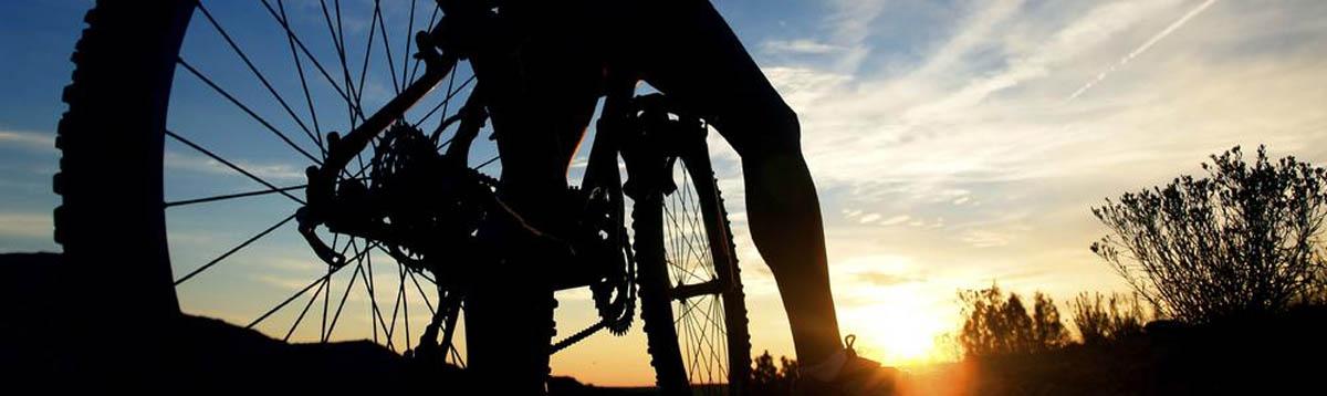 Cycles Eriksson - pyöräilyn erikoisliike